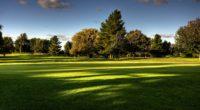 lawn field golf trees 4k 1541114446 200x110 - lawn, field, golf, trees 4k - lawn, golf, Field