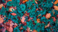 leaves autumn fallen forms 4k 1541114662 200x110 - leaves, autumn, fallen, forms 4k - Leaves, Fallen, Autumn