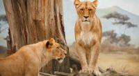 lion 4k 1542238187 200x110 - Lion 4k - predator wallpapers, lion wallpapers, king wallpapers, forest wallpapers, animals wallpapers, 5k wallpapers