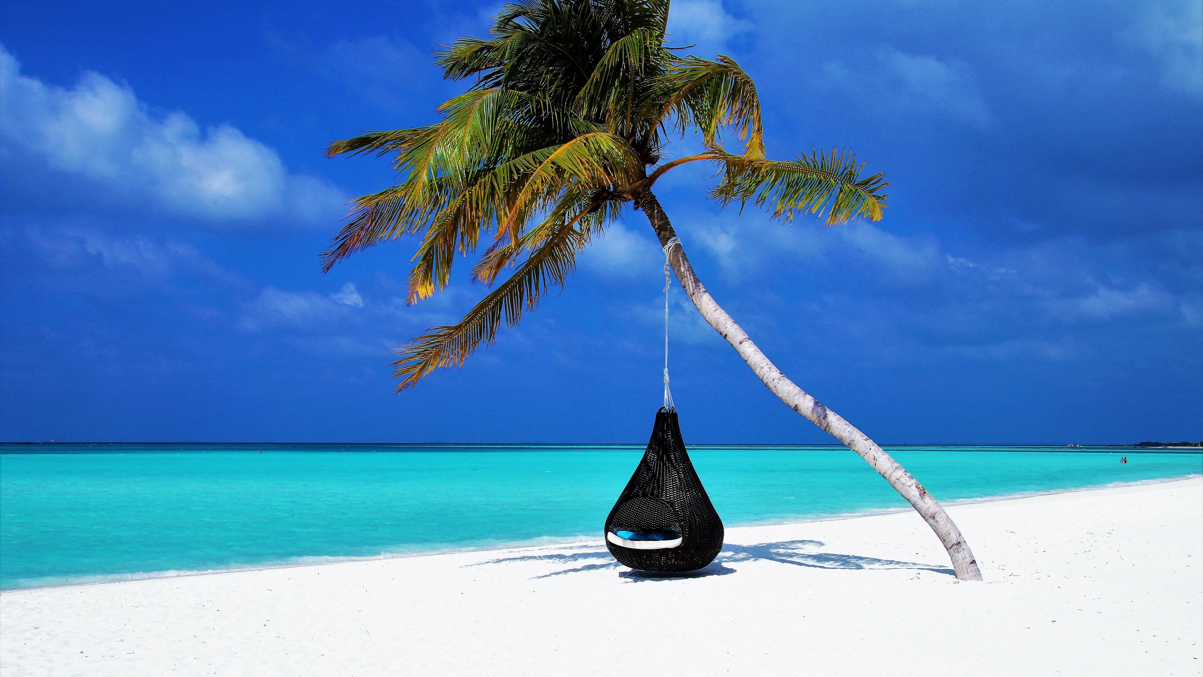 maldives palm beach relax rest ocean sand resort 4k 1541115167 - maldives, palm, beach, relax, rest, ocean, sand, resort 4k - Palm, Maldives, Beach