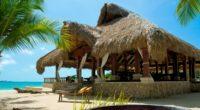 maldives tropical beach palm trees summer 4k 1541114441 200x110 - maldives, tropical, beach, palm trees, summer 4k - Tropical, Maldives, Beach