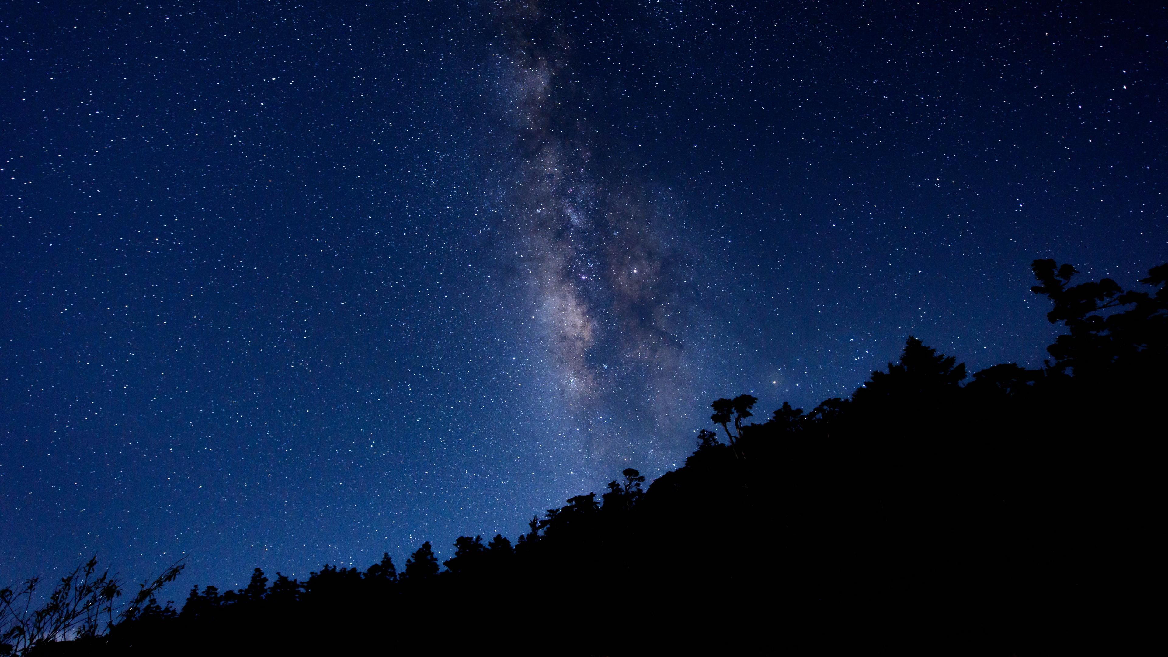 milky way starry sky trees 4k 1541116804 - milky way, starry sky, trees 4k - Trees, starry sky, milky way