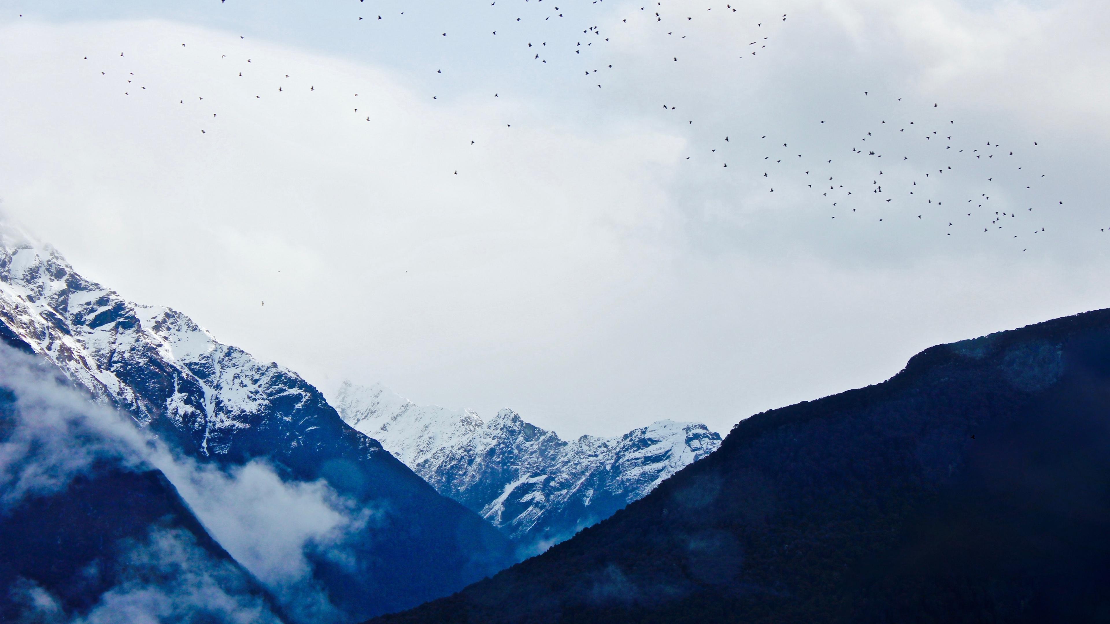 mountains sky top birds 4k 1541117877 - mountains, sky, top, birds 4k - top, Sky, Mountains
