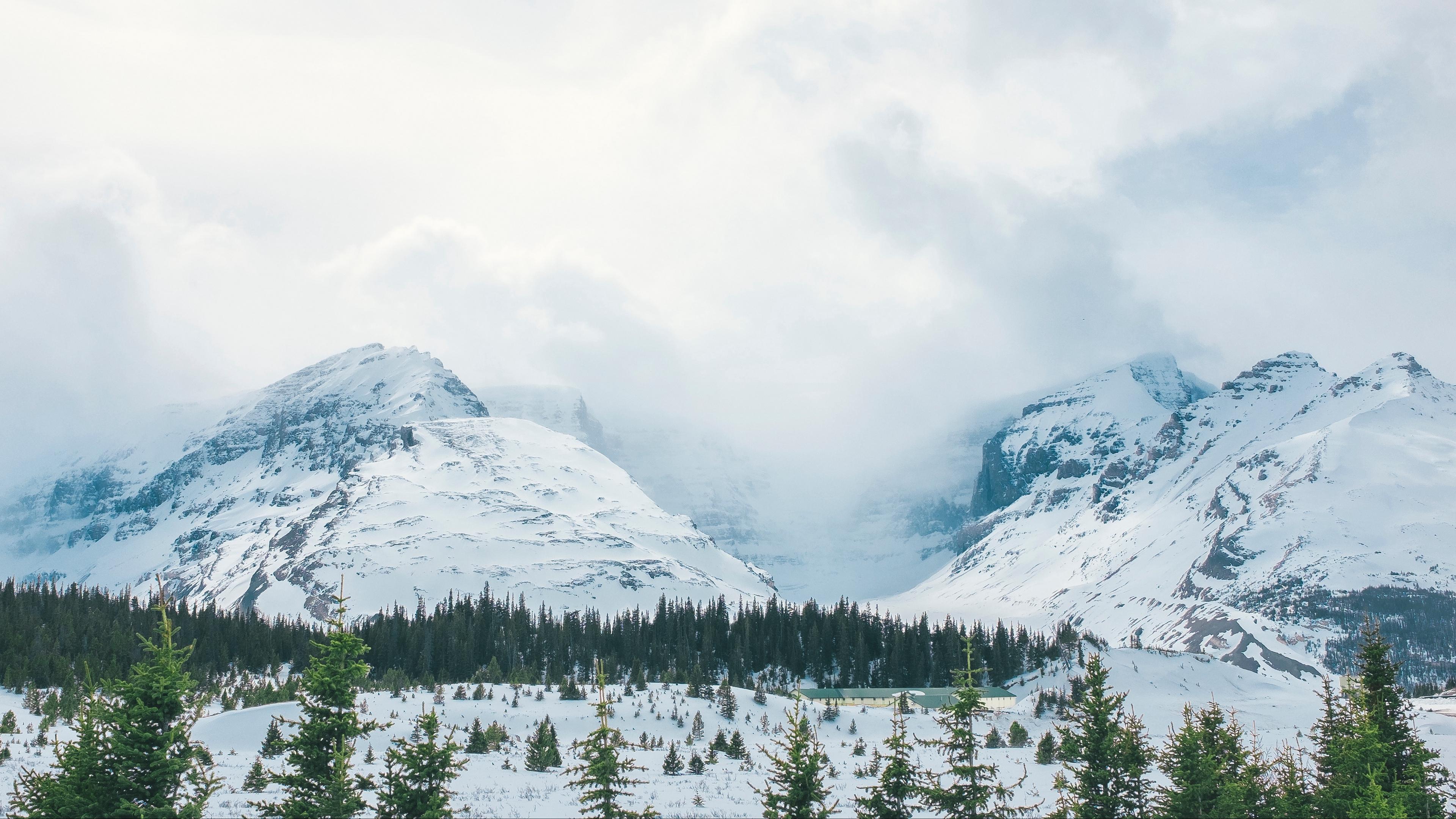 mountains snow peaks trees fog 4k 1541116472 - mountains, snow, peaks, trees, fog 4k - Snow, Peaks, Mountains