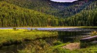 mountains trees river grass 4k 1541114102 200x110 - mountains, trees, river, grass 4k - Trees, River, Mountains