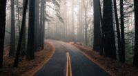 road fog autumn marking forest turn trees 4k 1541117194 200x110 - road, fog, autumn, marking, forest, turn, trees 4k - Road, fog, Autumn