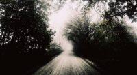 road fog bw trees 4k 1541115403 200x110 - road, fog, bw, trees 4k - Road, fog, bw