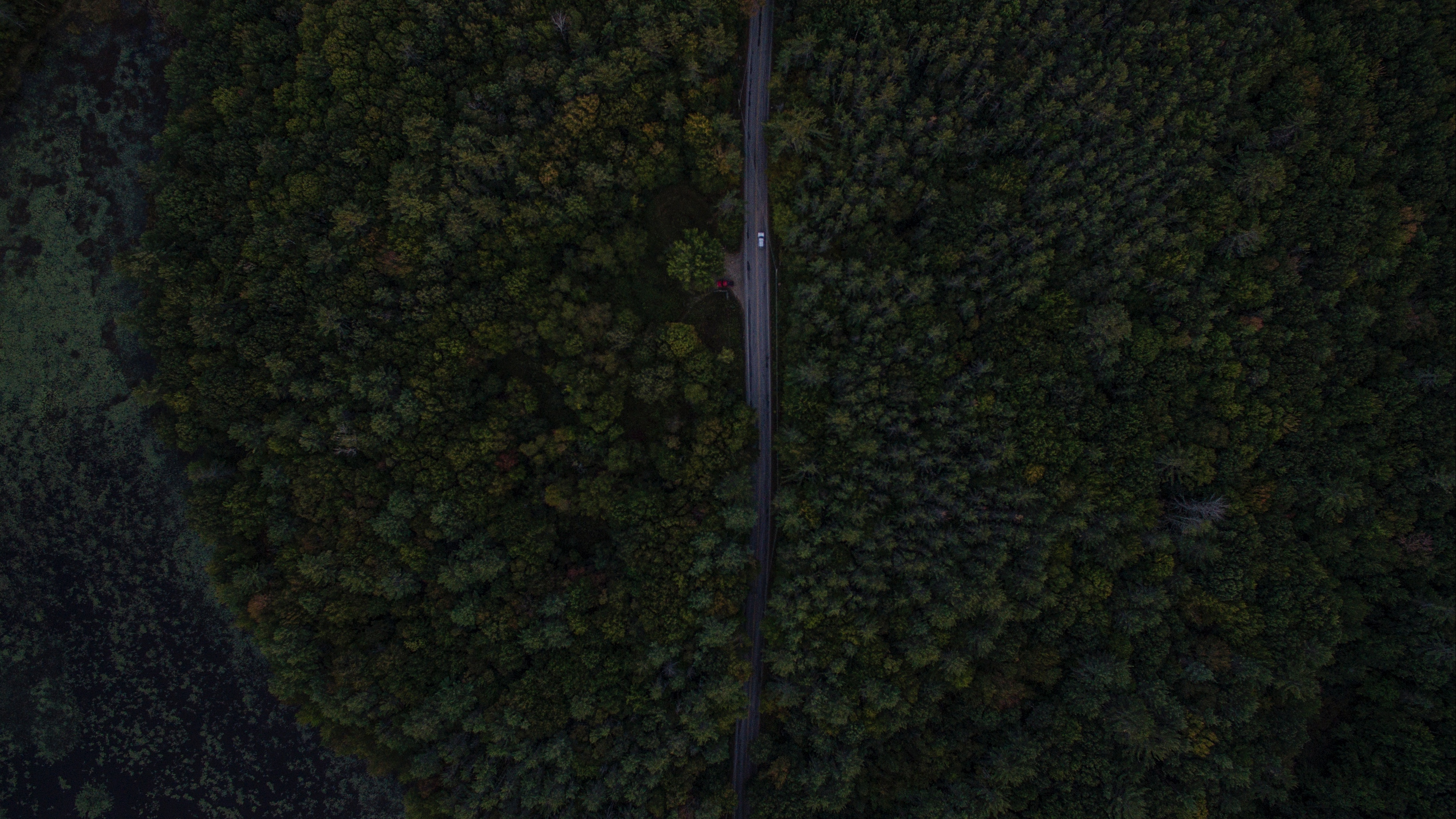 road trees aerial view forest 4k 1541115777 - road, trees, aerial view, forest 4k - Trees, Road, aerial view