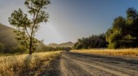 road trees mountains sunlight 4k 1541117423 200x110 - road, trees, mountains, sunlight 4k - Trees, Road, Mountains