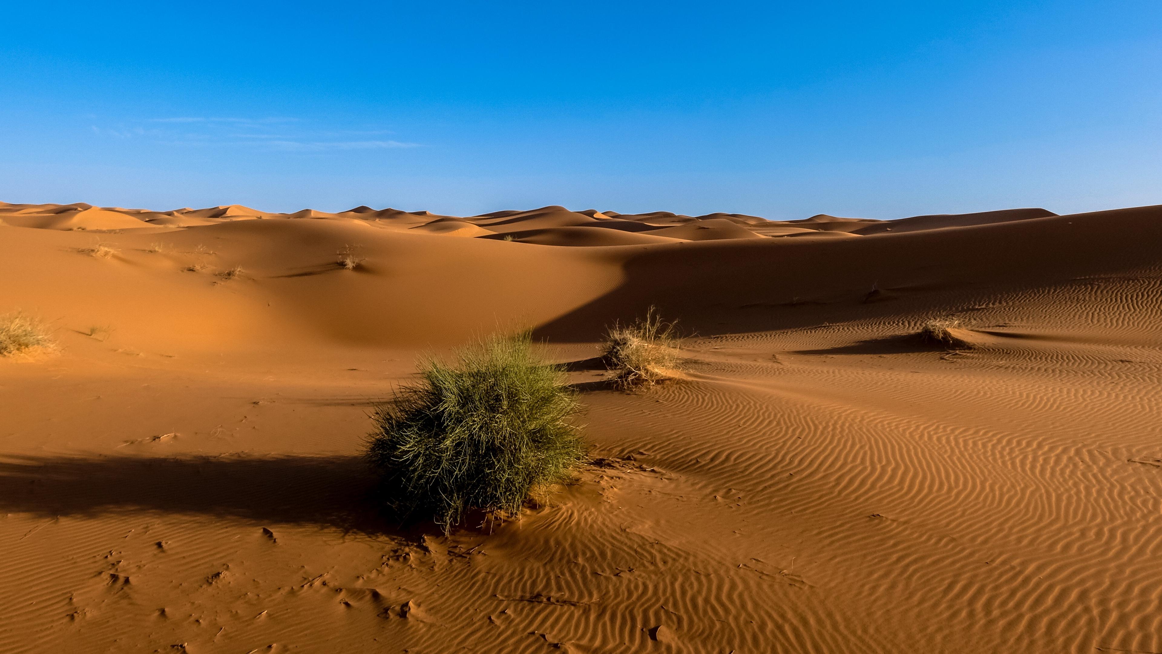 sahara desert sand sky 4k 1541116603 - sahara, desert, sand, sky 4k - Sand, Sahara, Desert