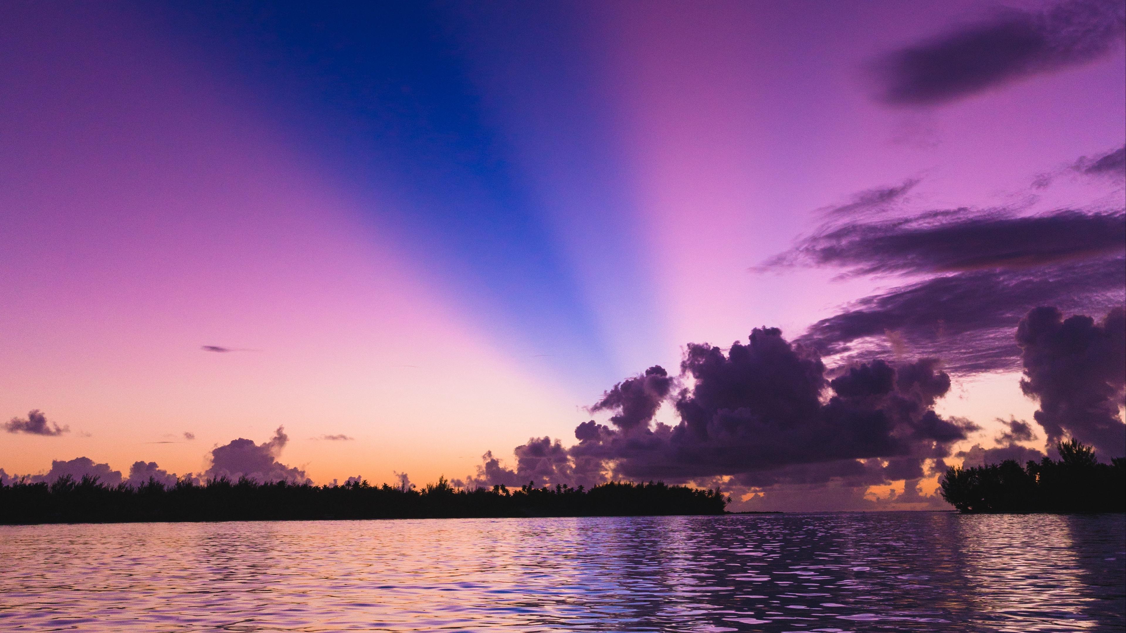 sea trees sunset sky 4k 1541117833 - sea, trees, sunset, sky 4k - Trees, sunset, Sea