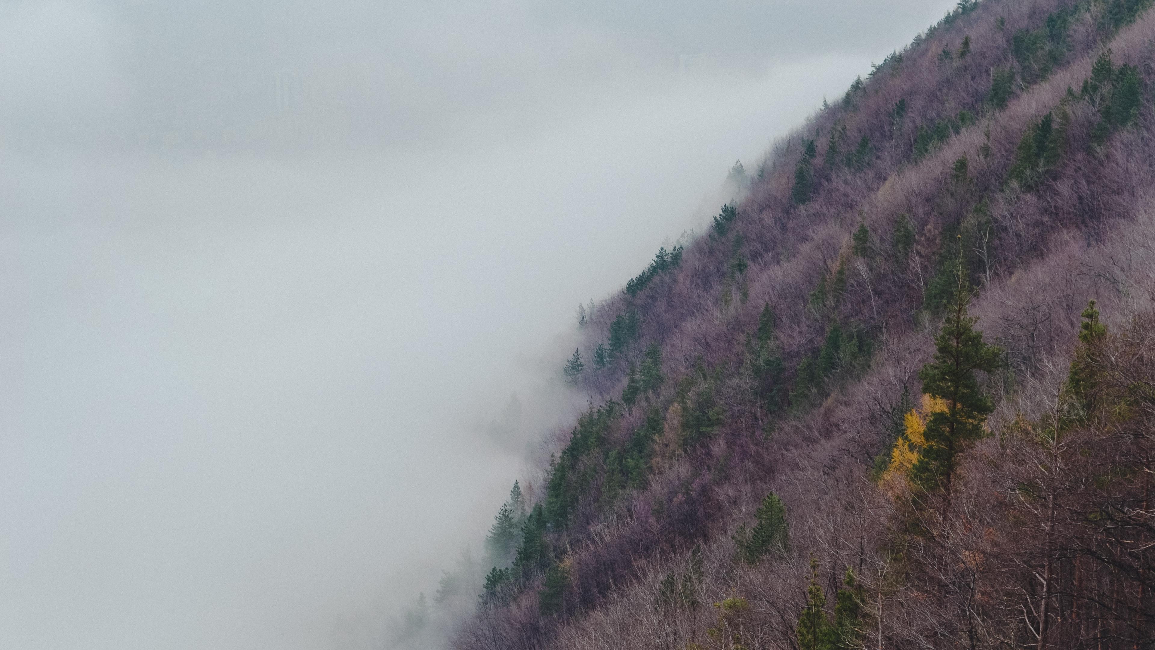 slope hill grass fog 4k 1541116165 - slope, hill, grass, fog 4k - slope, hill, Grass