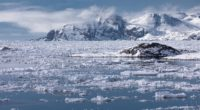 snow ice sea greenland 4k 1541115603 200x110 - snow, ice, sea, greenland 4k - Snow, Sea, Ice
