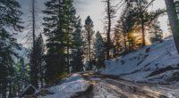 snow winter trees road 4k 1541114425 200x110 - snow, winter, trees, road 4k - Winter, Trees, Snow