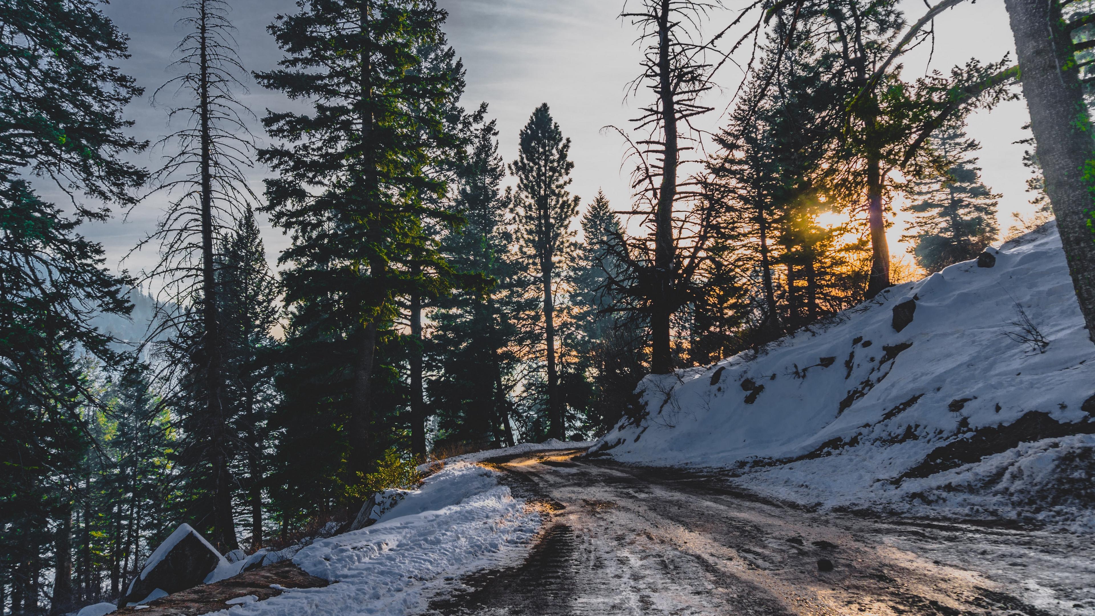 snow winter trees road 4k 1541114425 - snow, winter, trees, road 4k - Winter, Trees, Snow