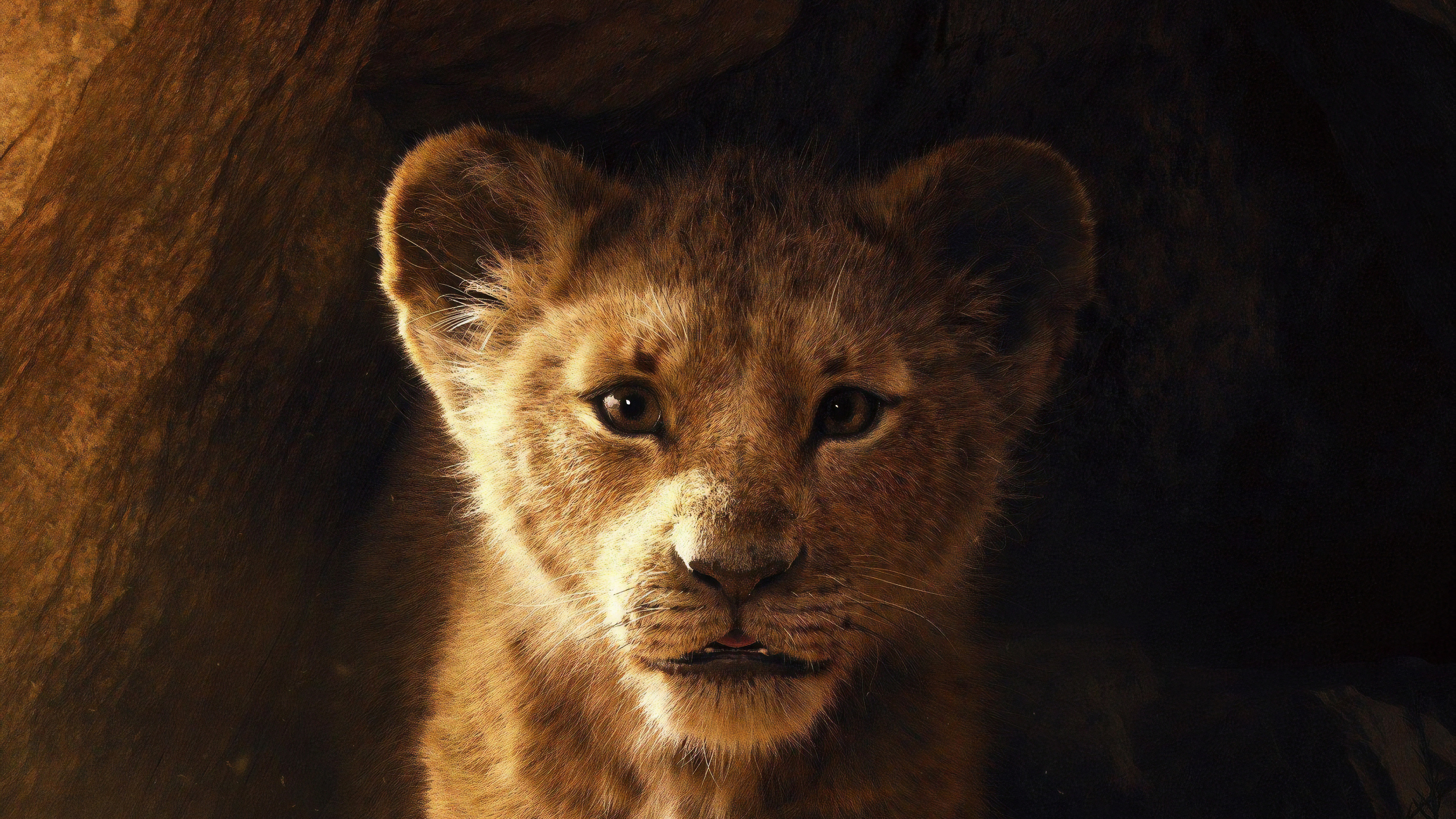 the lion king 2019 4k 1543105503 - The Lion King 2019 4k - the lion king wallpapers, movies wallpapers, lion wallpapers, hd-wallpapers, disney wallpapers, 5k wallpapers, 4k-wallpapers, 2019 movies wallpapers