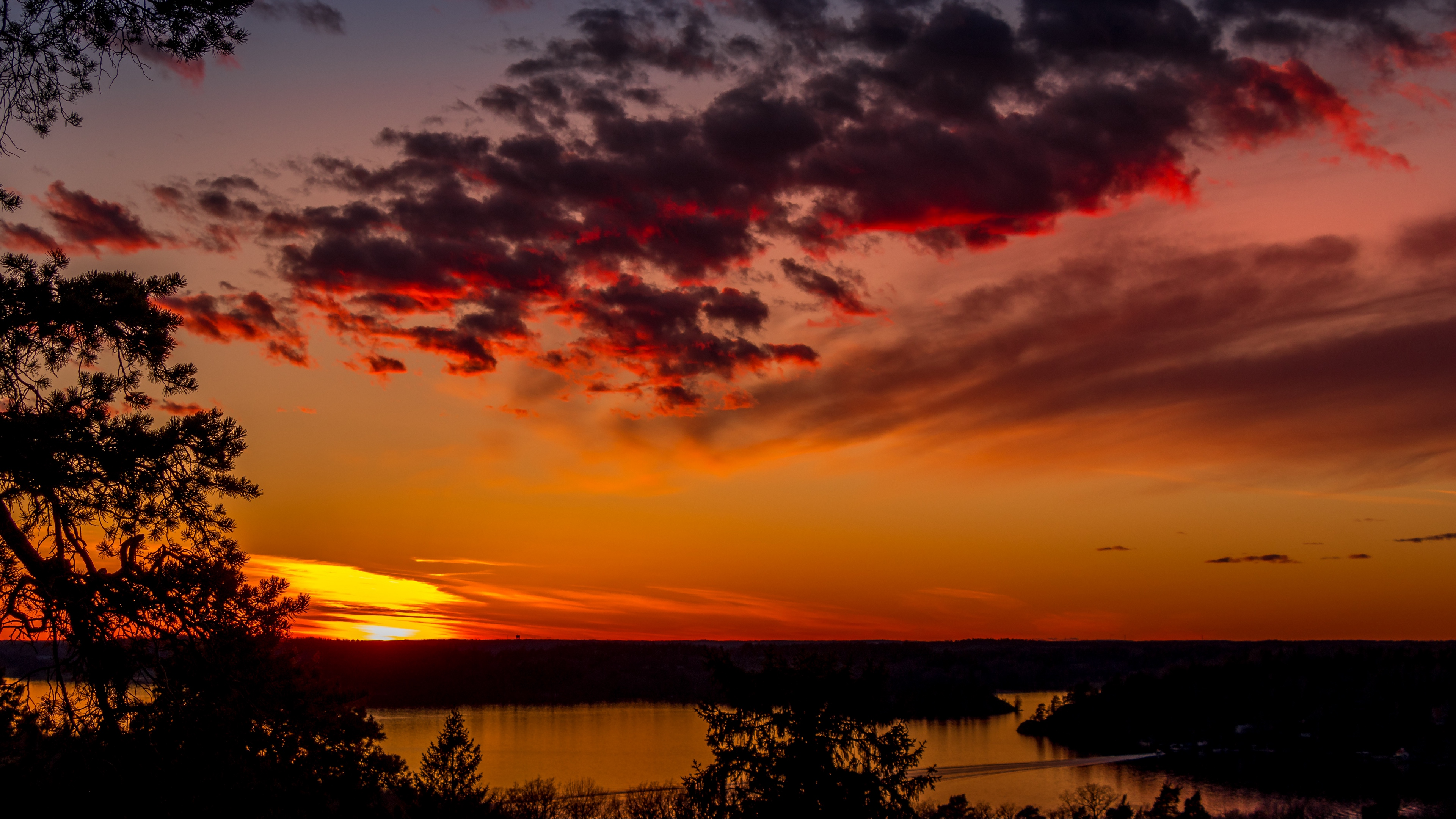 trees lake sunset clouds sky evening 4k 1541113516 - trees, lake, sunset, clouds, sky, evening 4k - Trees, sunset, Lake