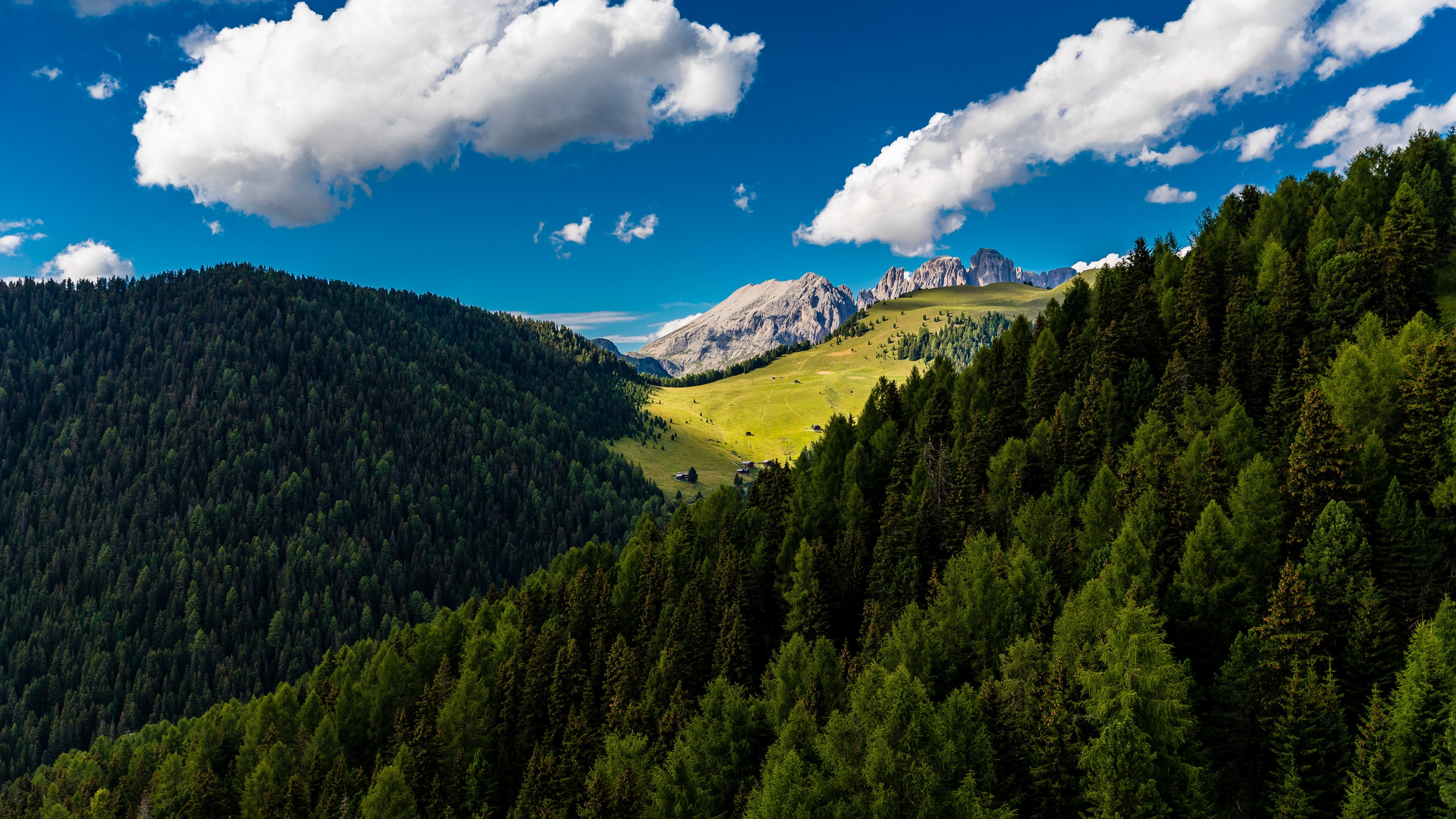 trees mountains clouds summer 4k 1541114085 - trees, mountains, clouds, summer 4k - Trees, Mountains, Clouds