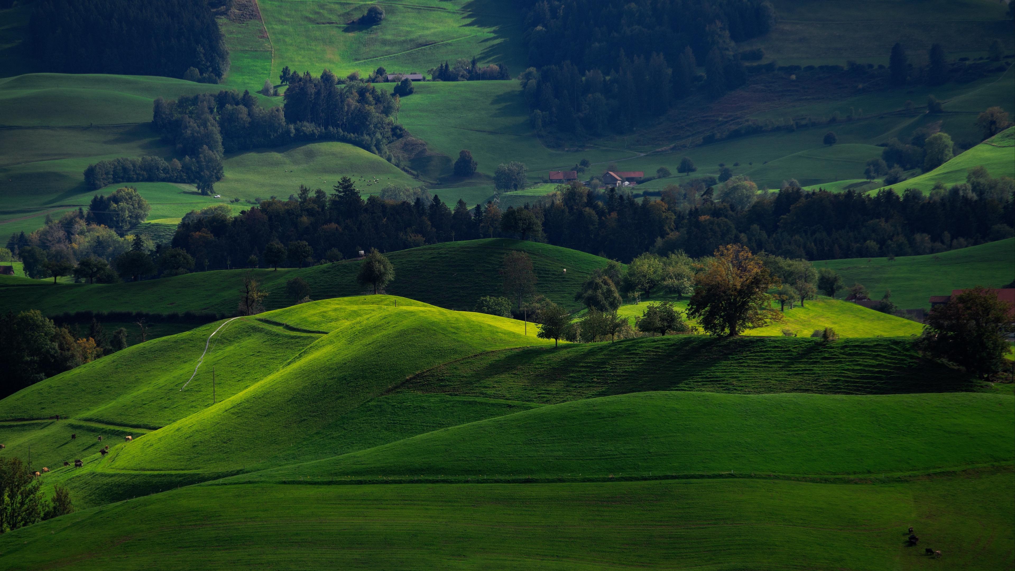valley green field hirzel switzerland 4k 1541113683 - valley, green, field, hirzel, switzerland 4k - Valley, green, Field