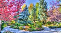 vejle colorado park hdr 4k 1541113985 200x110 - vejle, colorado, park, hdr 4k - vejle, Park, Colorado