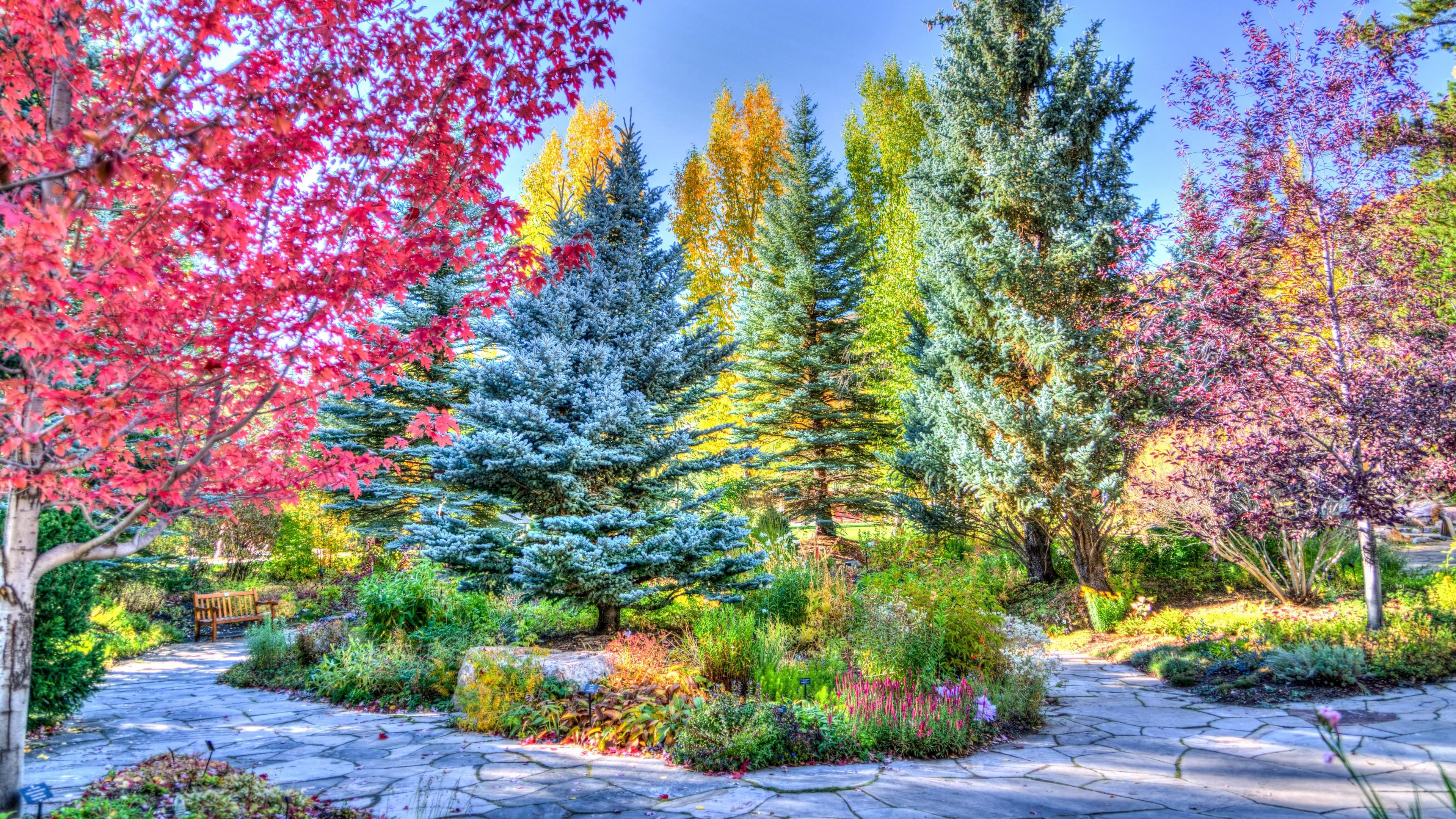 vejle colorado park hdr 4k 1541113985 - vejle, colorado, park, hdr 4k - vejle, Park, Colorado