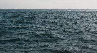 water sea horizon waves 4k 1541114106 200x110 - water, sea, horizon, waves 4k - Water, Sea, Horizon