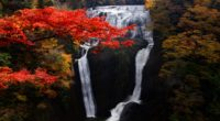 waterfall trees precipice current autumn 4k 1541117260 200x110 - waterfall, trees, precipice, current, autumn 4k - Waterfall, Trees, precipice