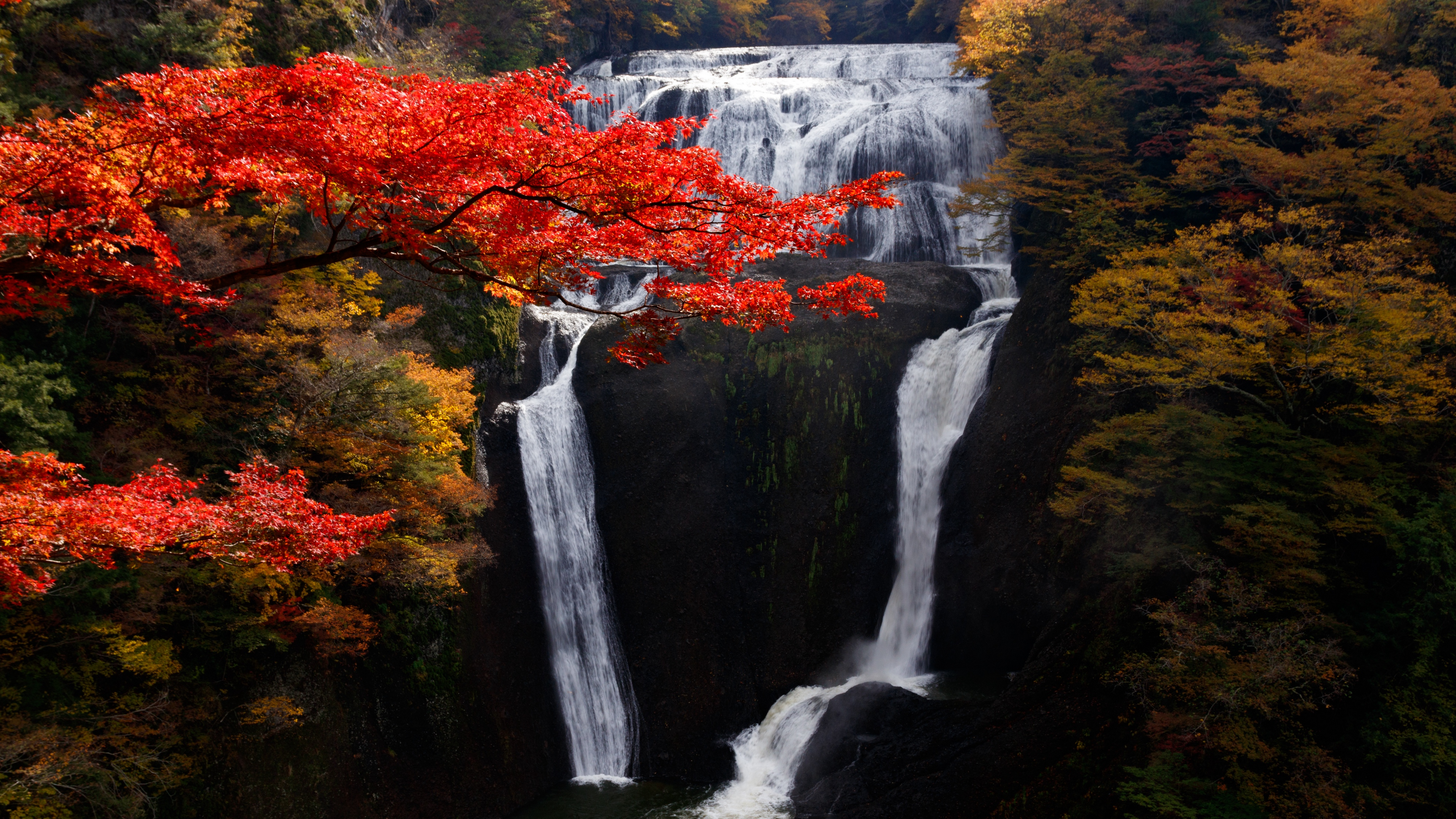 waterfall trees precipice current autumn 4k 1541117260 - waterfall, trees, precipice, current, autumn 4k - Waterfall, Trees, precipice