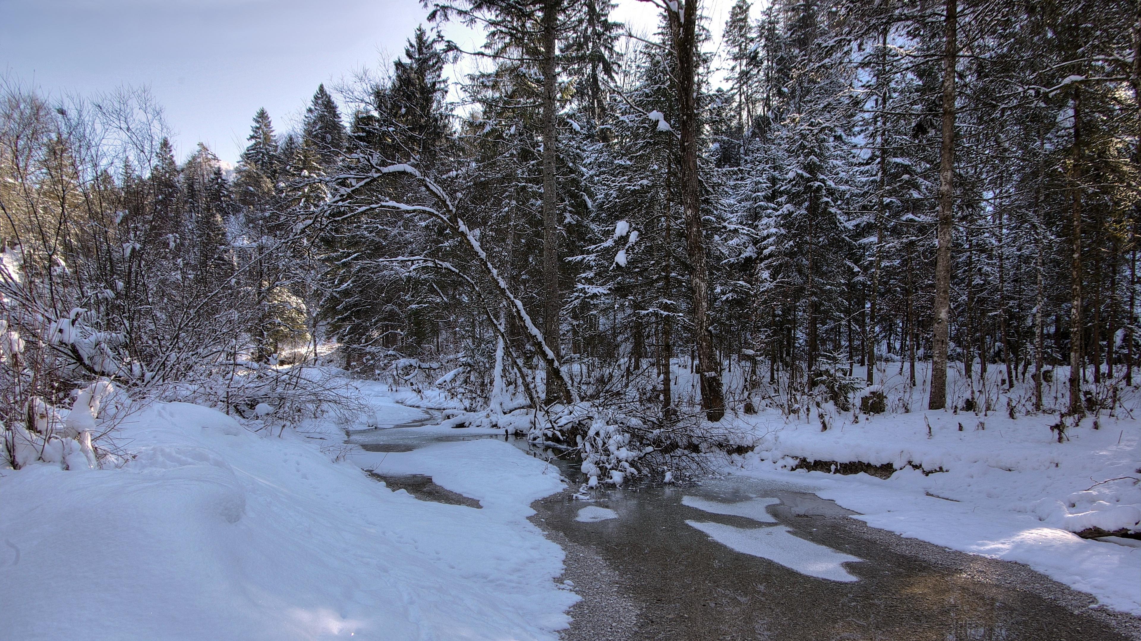 winter snow river forest landscape 4k 1541117539 - winter, snow, river, forest, landscape 4k - Winter, Snow, River
