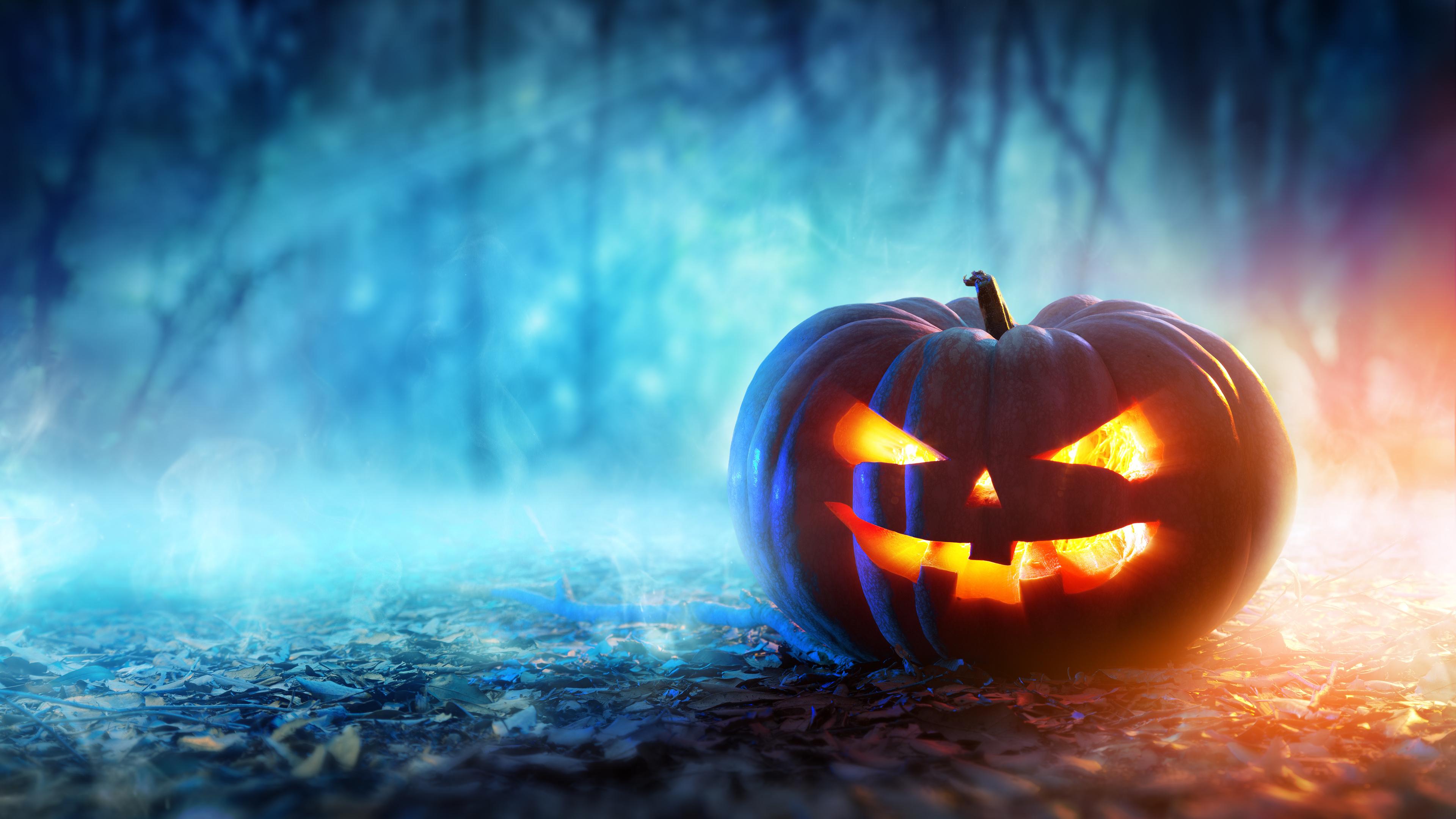 halloween 4k 1543946417 - Halloween 4k - pumpkin wallpapers, holidays wallpapers, hd-wallpapers, halloween wallpapers, celebrations wallpapers, 8k wallpapers, 5k wallpapers, 4k-wallpapers