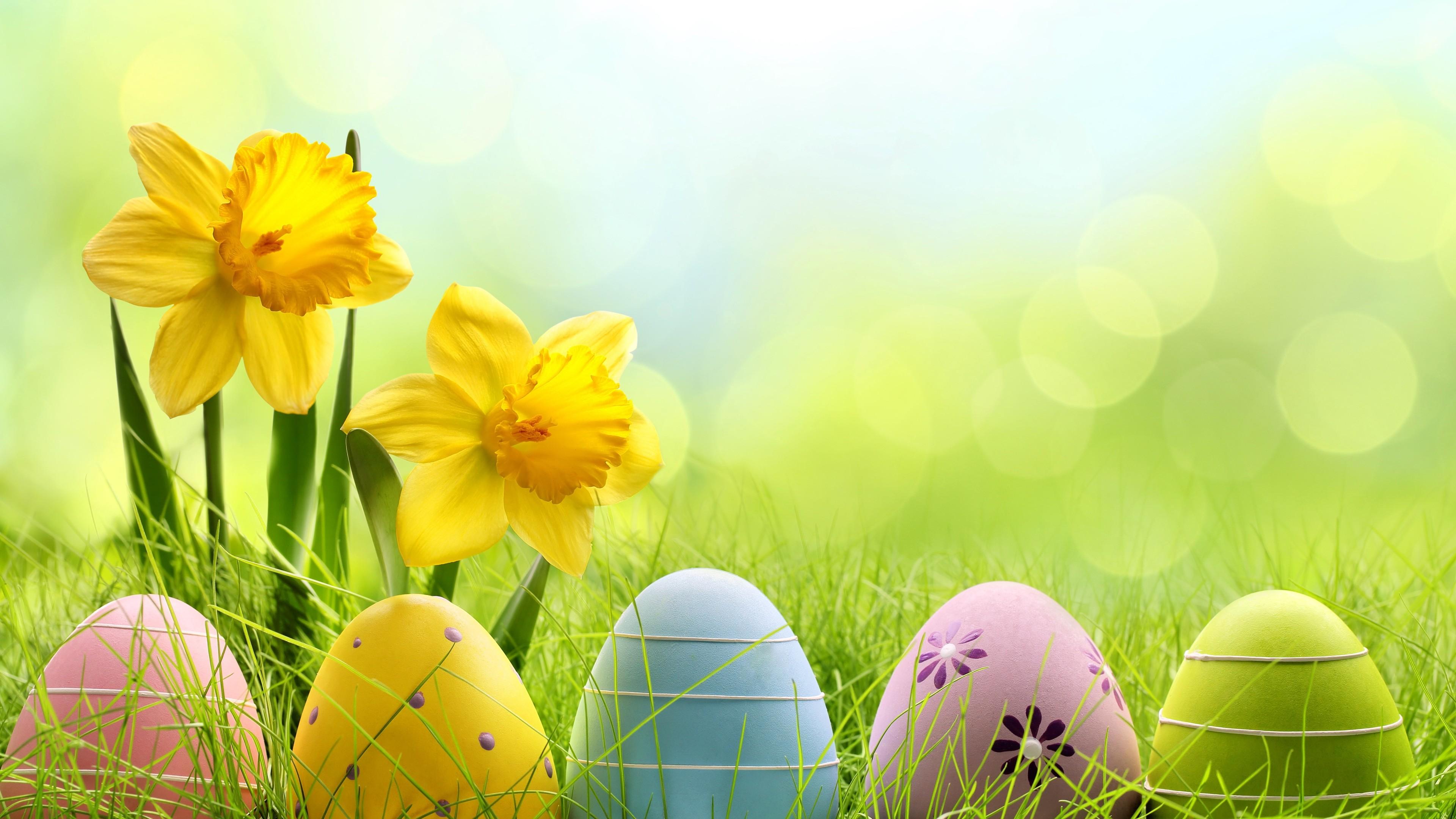 holiday easter egg 4k 1543946387 - Holiday Easter Egg 4k - eggs wallpapers, easter wallpapers, celebrations wallpapers