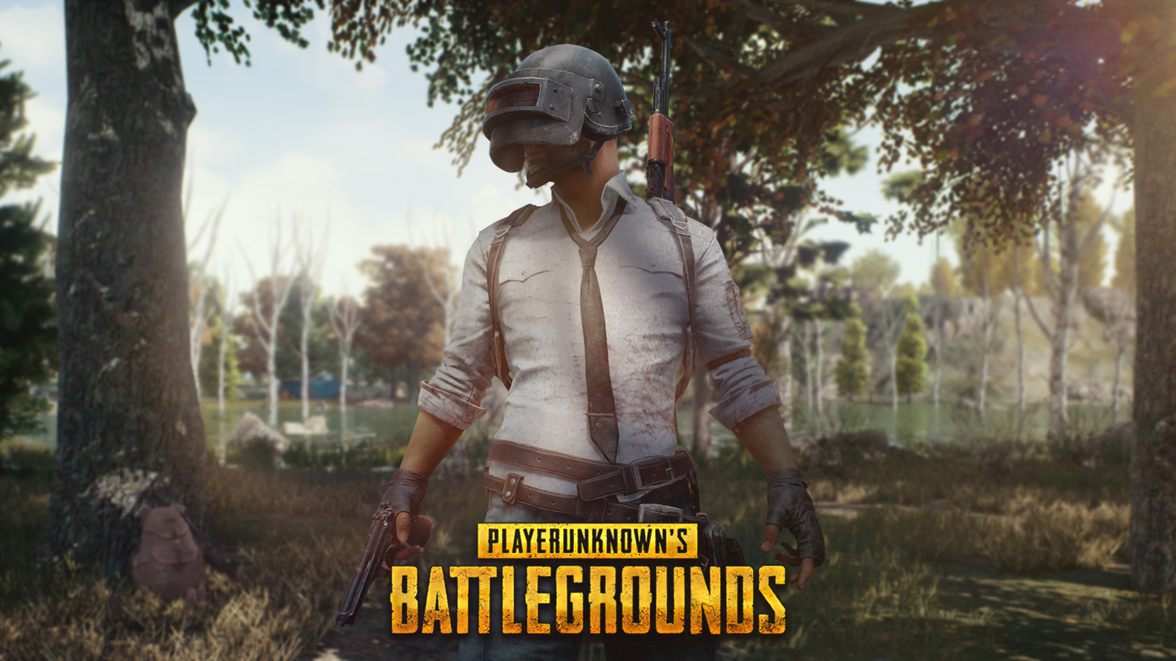3840x2160 Pubg Game Helmet Guy 4k 4k Hd 4k Wallpapers: Pubg Mobile Helmet Guy 4k Pubg Wallpapers, Playerunknowns