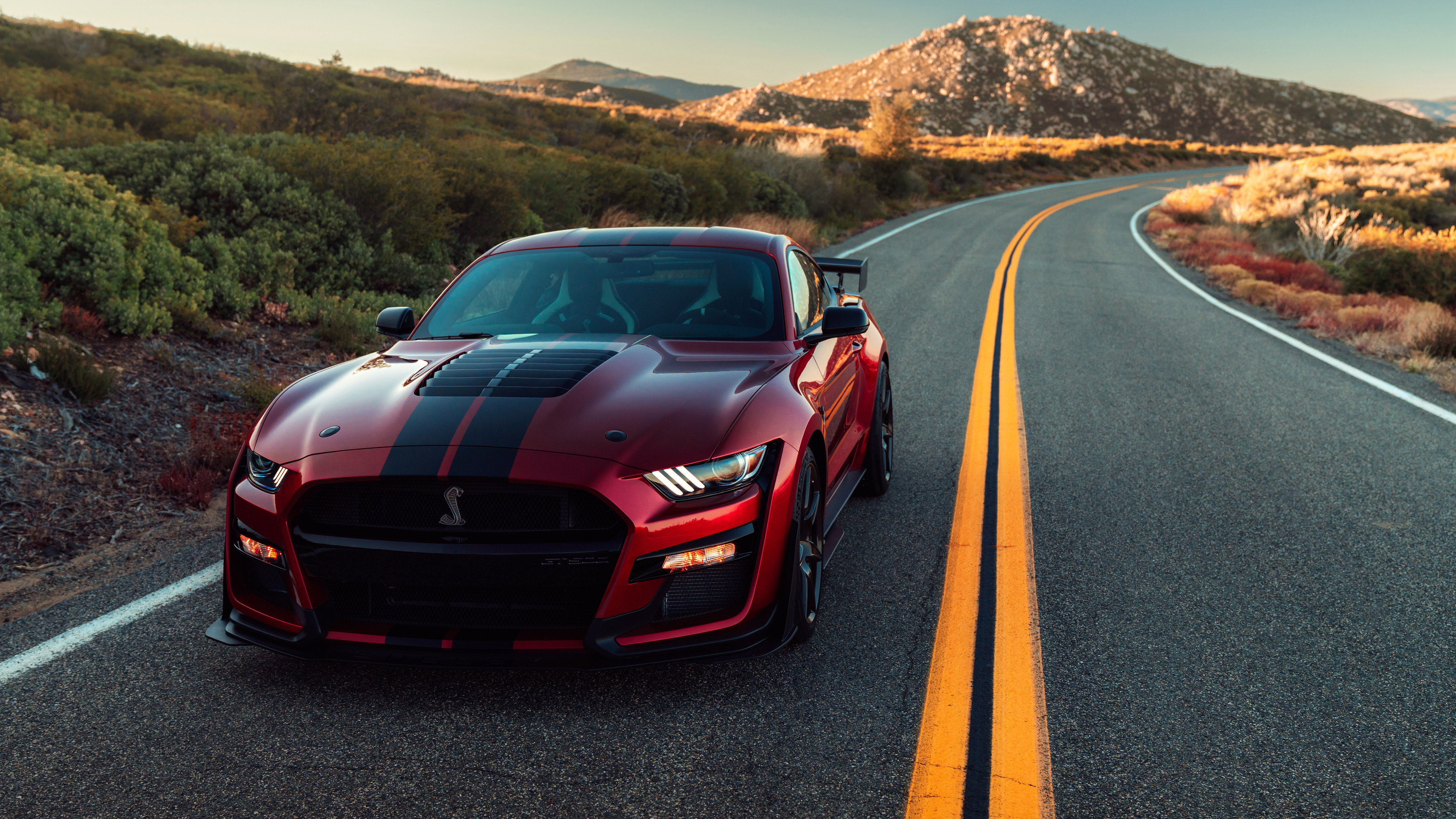 2020 Ford Mustang Shelby GT500 4k shelby wallpapers, hd ...