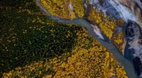 aerial photography beauty in nature forest 4k 1551644074 200x110 - Aerial Photography Beauty In Nature Forest 4k - trees wallpapers, photography wallpapers, nature wallpapers, hd-wallpapers, forest wallpapers, aerial wallpapers, 4k-wallpapers
