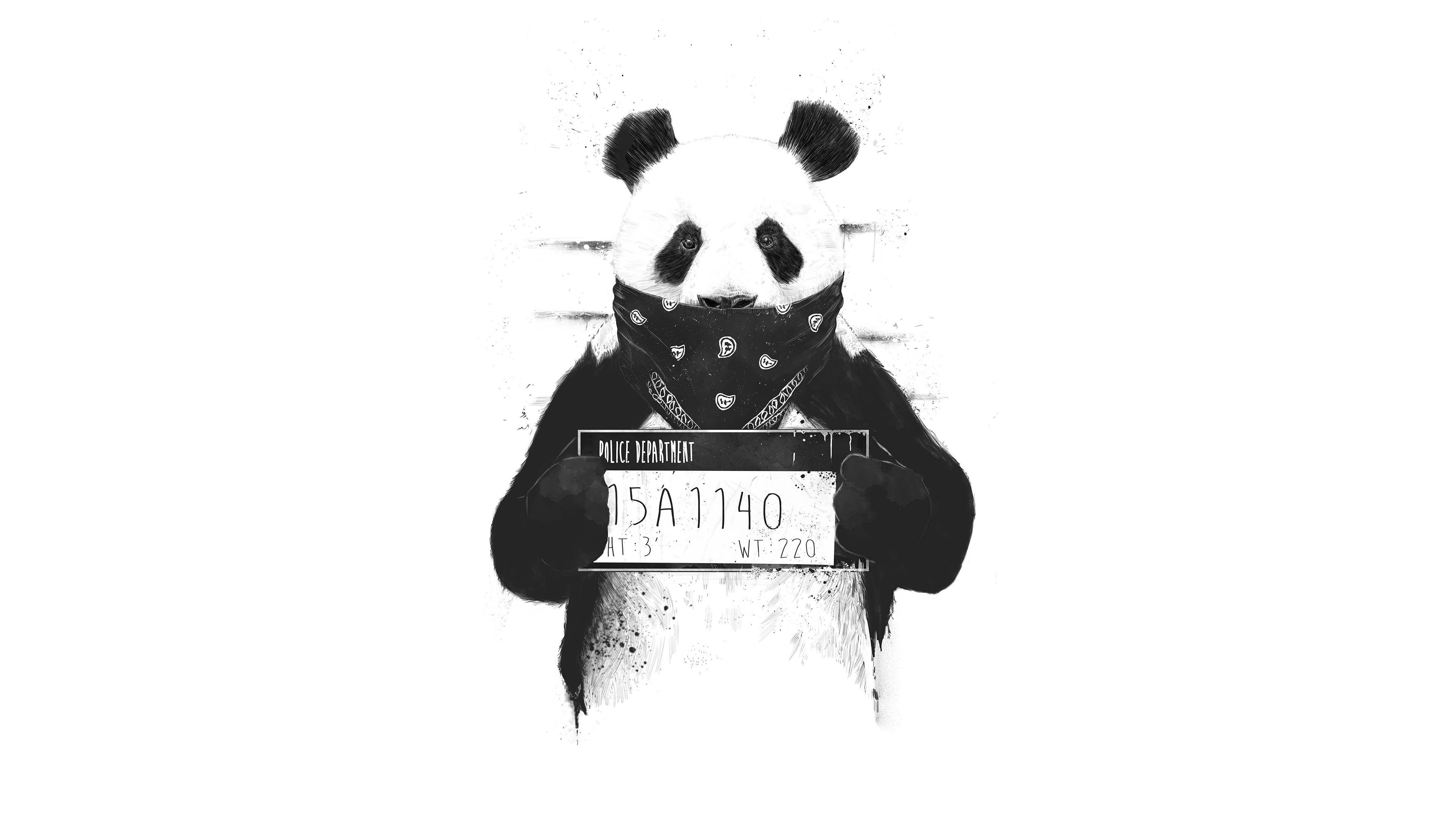 bad panda 4k 1551641511 - Bad Panda 4k - panda wallpapers, monochrome wallpapers, digital art wallpapers, black and white wallpapers, artwork wallpapers, artist wallpapers, 4k-wallpapers