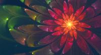 fractal flower 4k 1553075338 200x110 - Fractal Flower 4k - hd-wallpapers, fractal wallpapers, digital art wallpapers, deviantart wallpapers, abstract wallpapers, 4k-wallpapers
