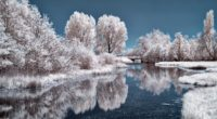 ice lake frozen trees 4k 1551643943 200x110 - Ice Lake Frozen Trees 4k - winter wallpapers, trees wallpapers, snow wallpapers, nature wallpapers, lake wallpapers, ice wallpapers, hd-wallpapers, 4k-wallpapers