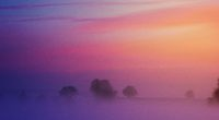 pastel morning 4k 1551644192 200x110 - Pastel Morning 4k - nature wallpapers, morning wallpapers, hd-wallpapers, 4k-wallpapers