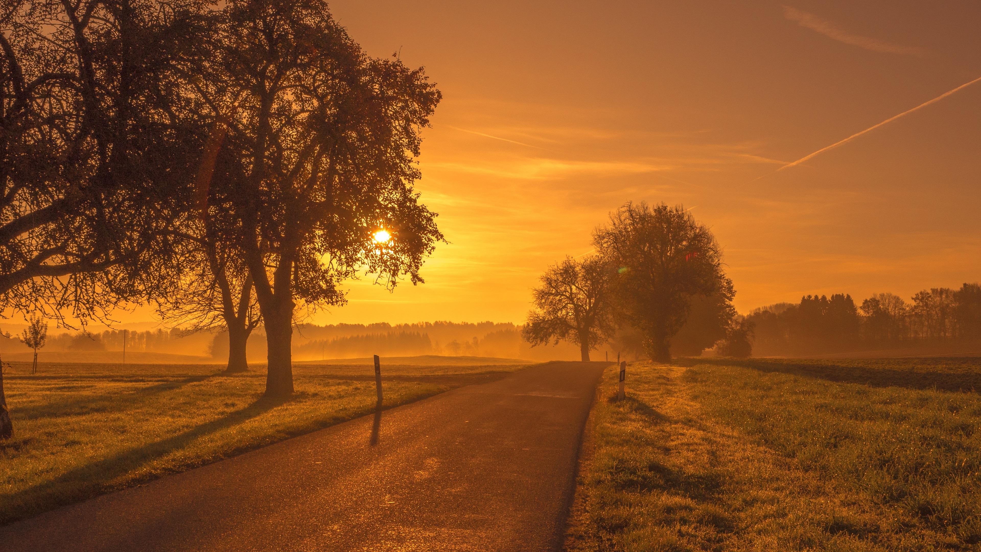 scenic road sunrise sunset trees meadow 1551644501 - Scenic Road Sunrise Sunset Trees Meadow - trees wallpapers, sunset wallpapers, sunrise wallpapers, nature wallpapers, hd-wallpapers, 4k-wallpapers