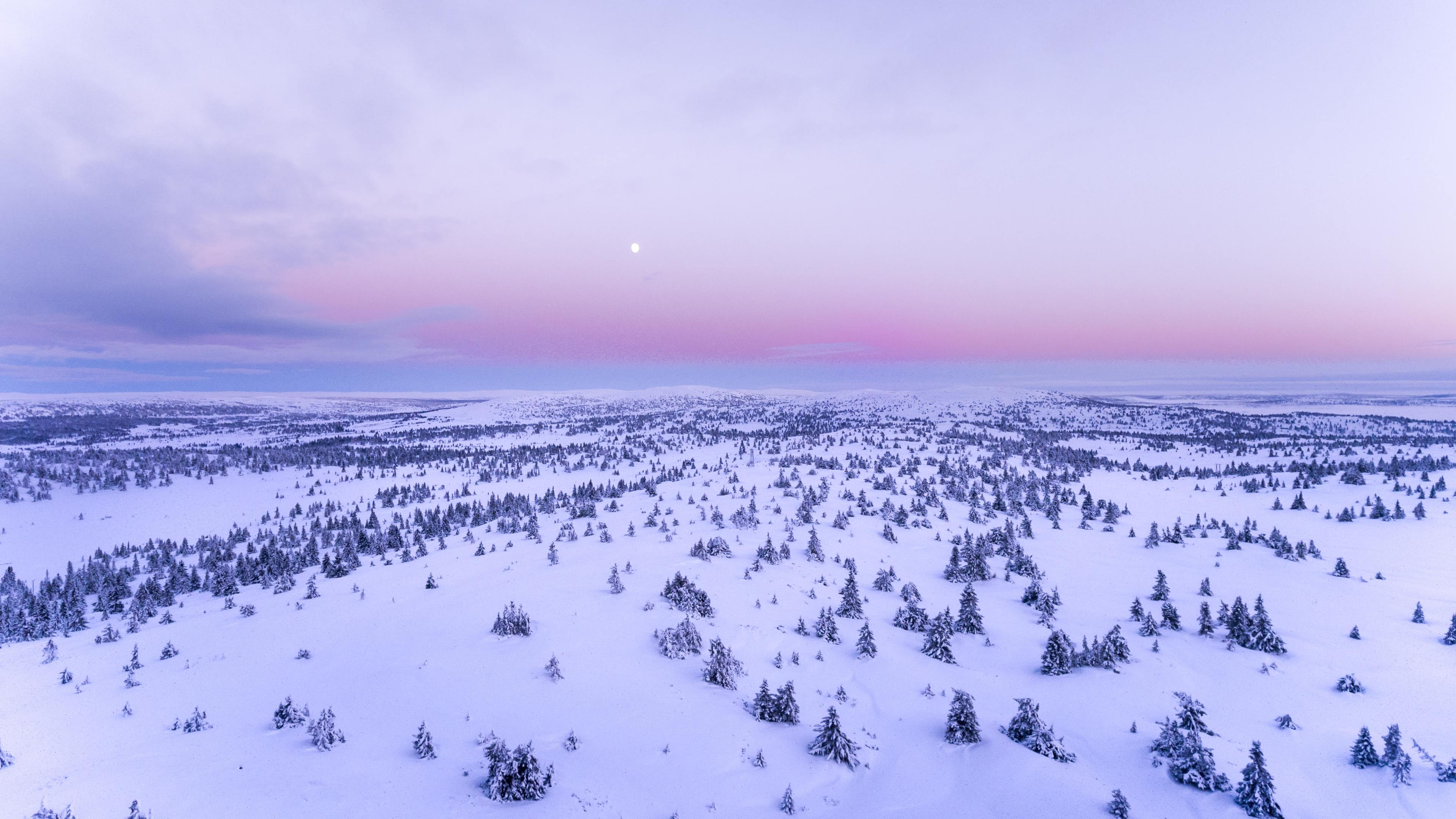 Wallpaper 4k Snow Covered Field 4k 4k Wallpapers Aerial