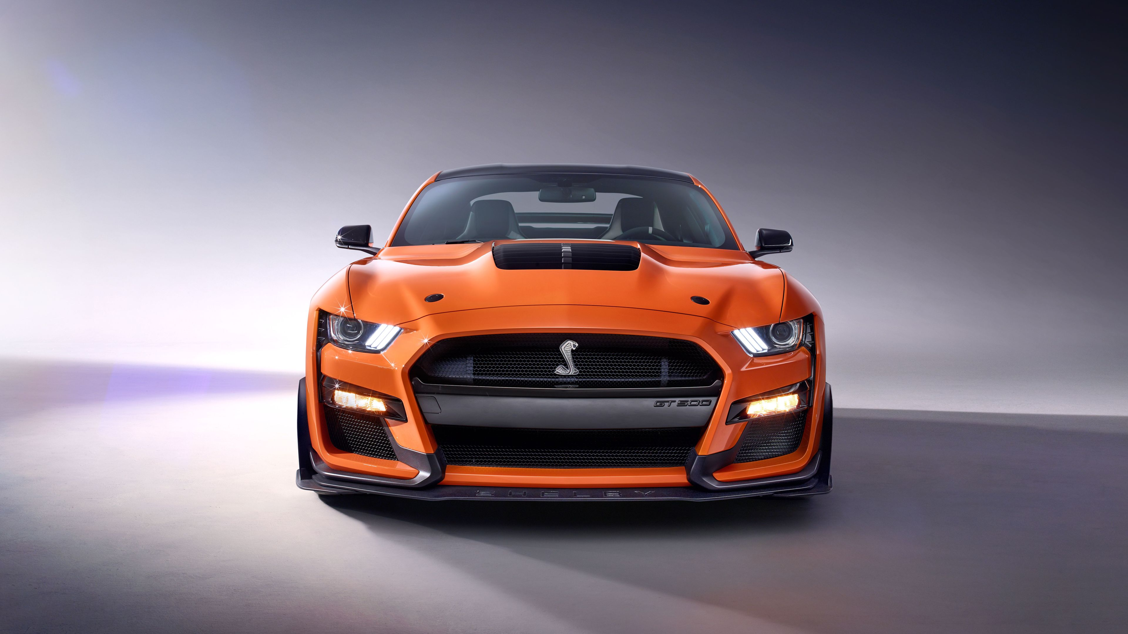 2020 ford mustang shelby gt500 front 4k 1554245141 - 2020 Ford Mustang Shelby GT500 Front 4k - mustang wallpapers, hd-wallpapers, ford mustang wallpapers, cars wallpapers, 5k wallpapers, 4k-wallpapers, 2020 cars wallpapers