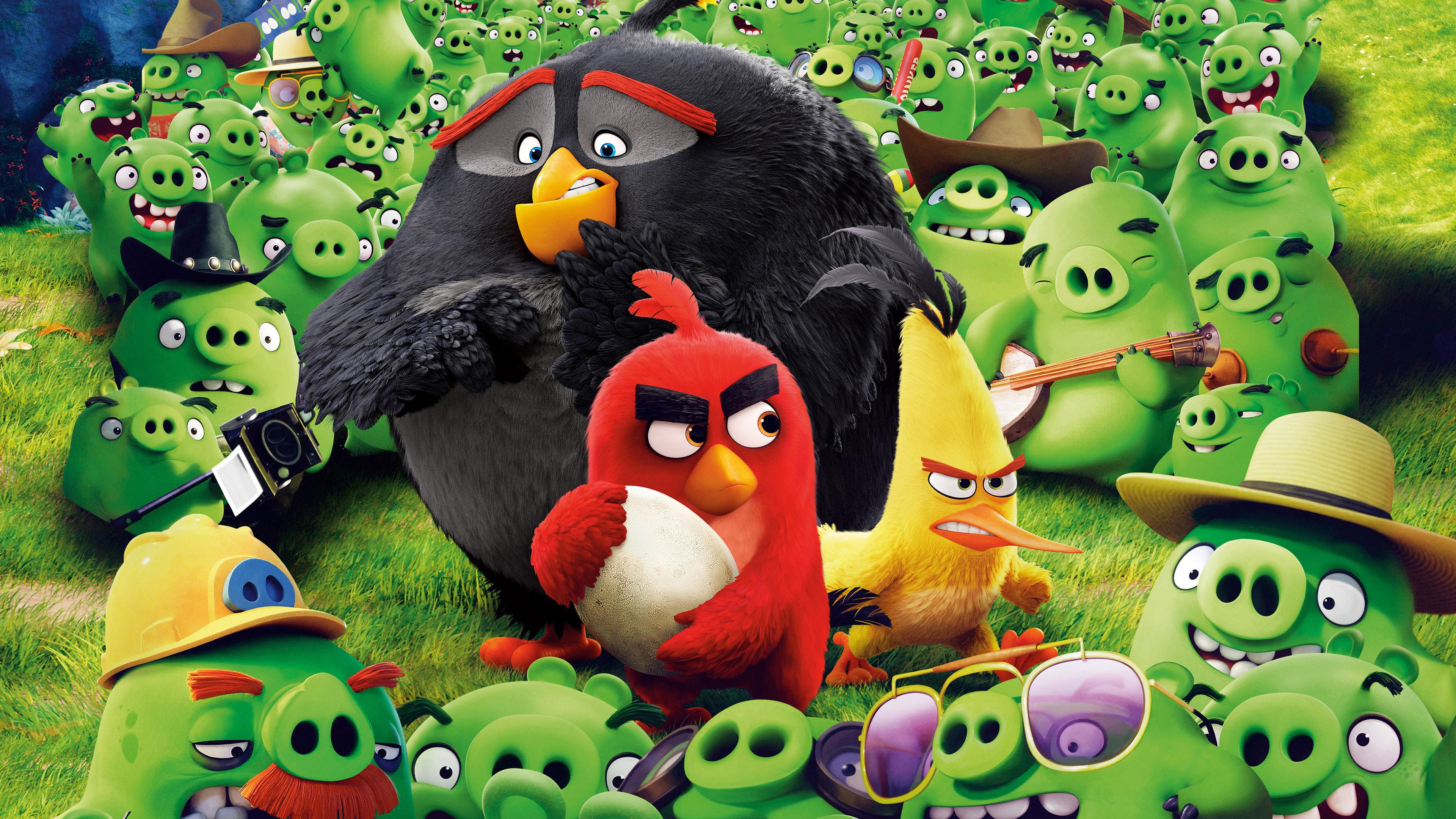 angry birds save the egg 4k 1555208799 - Angry Birds Save The Egg 4k - the angry birds movie wallpapers, movies wallpapers, hd-wallpapers, birds wallpapers, animated movies wallpapers, angry birds wallpapers, 4k-wallpapers