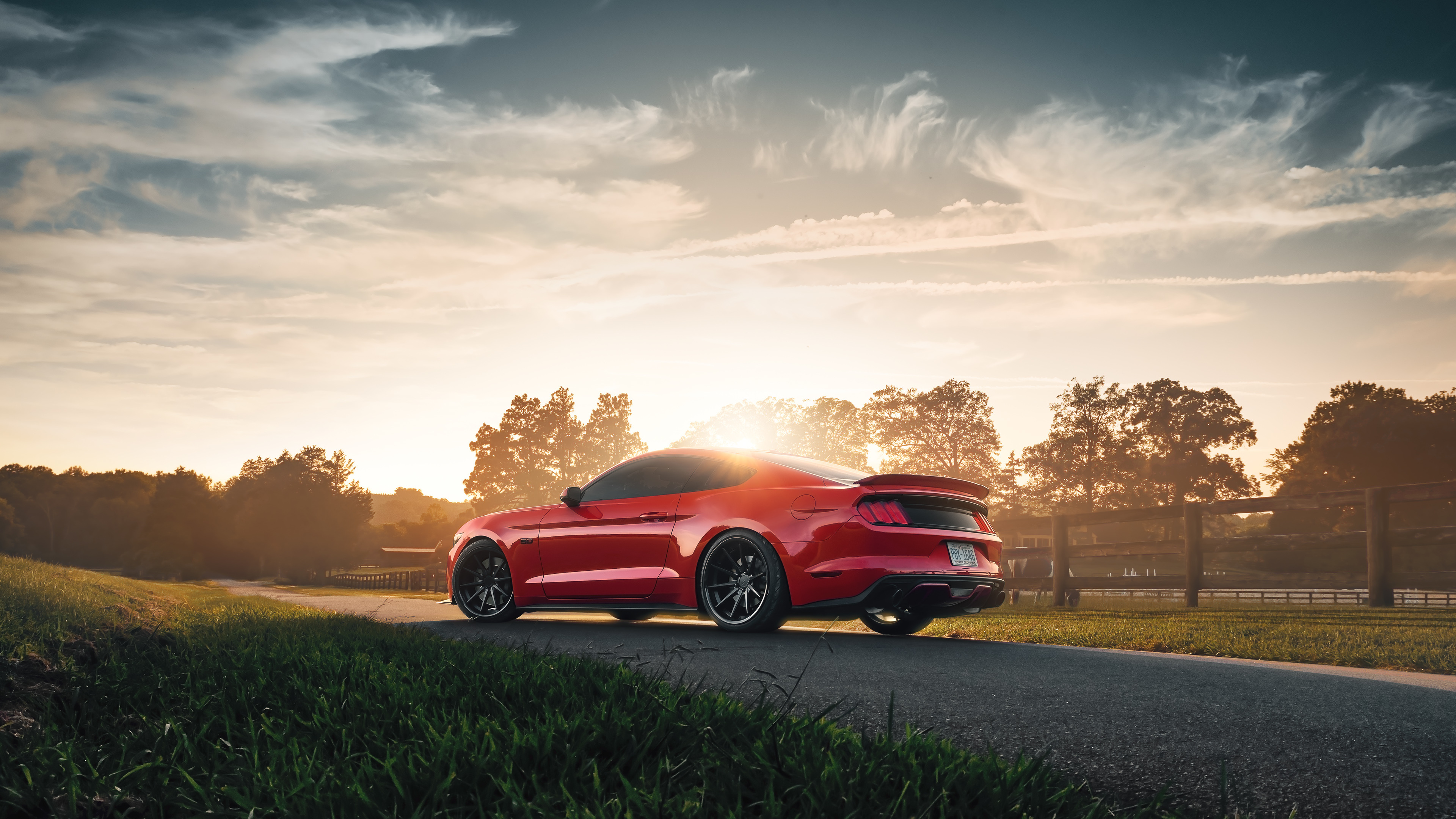 ford mustang gt 2019 4k 1555206864 - Ford Mustang GT 2019 4k - hd-wallpapers, ford wallpapers, ford mustang wallpapers, cars wallpapers, behance wallpapers, 4k-wallpapers, 2019 cars wallpapers