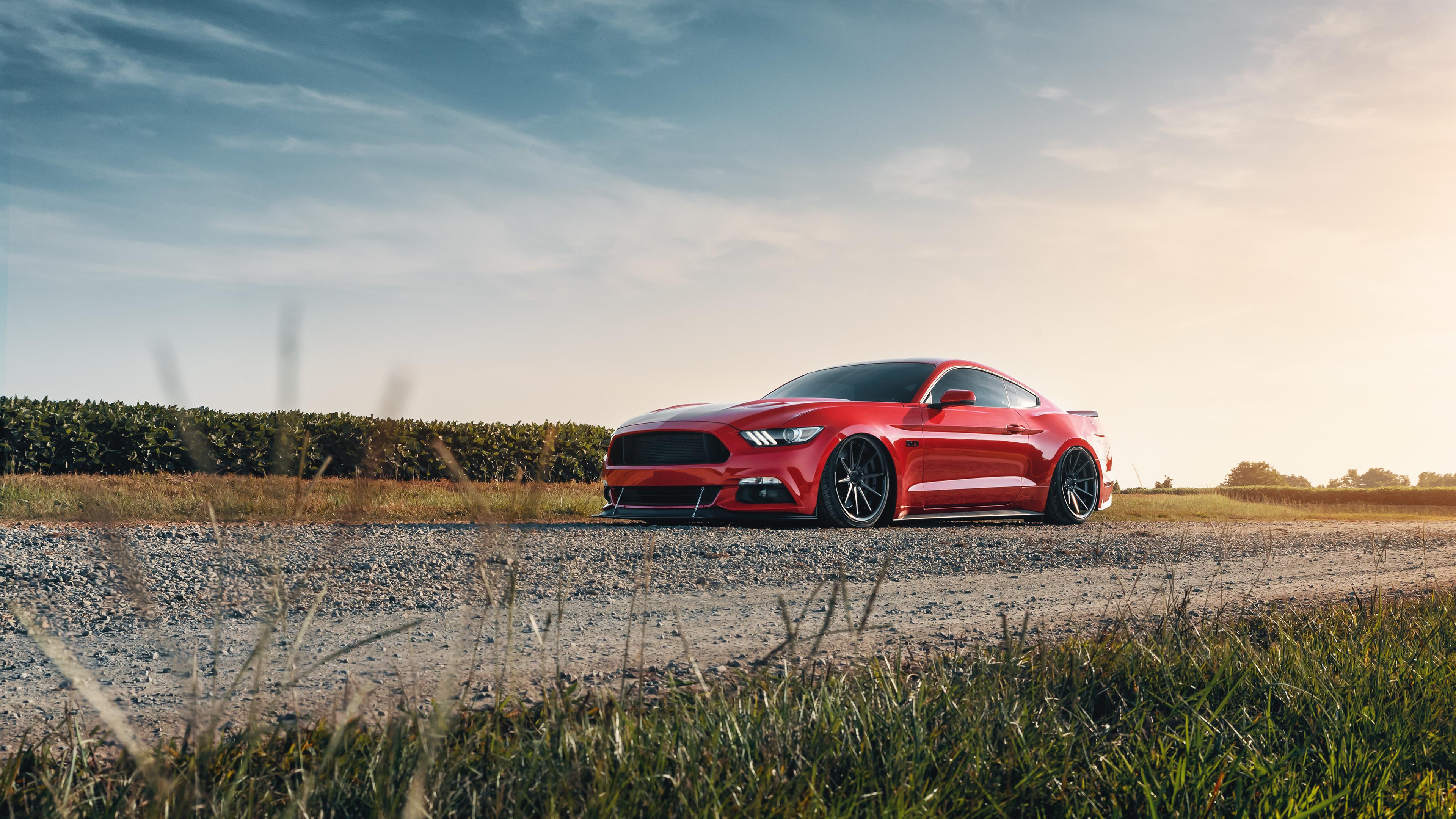ford mustang gt red 4k 1555206876 - Ford Mustang GT Red 4k - hd-wallpapers, ford mustang wallpapers, cars wallpapers, behance wallpapers, 4k-wallpapers
