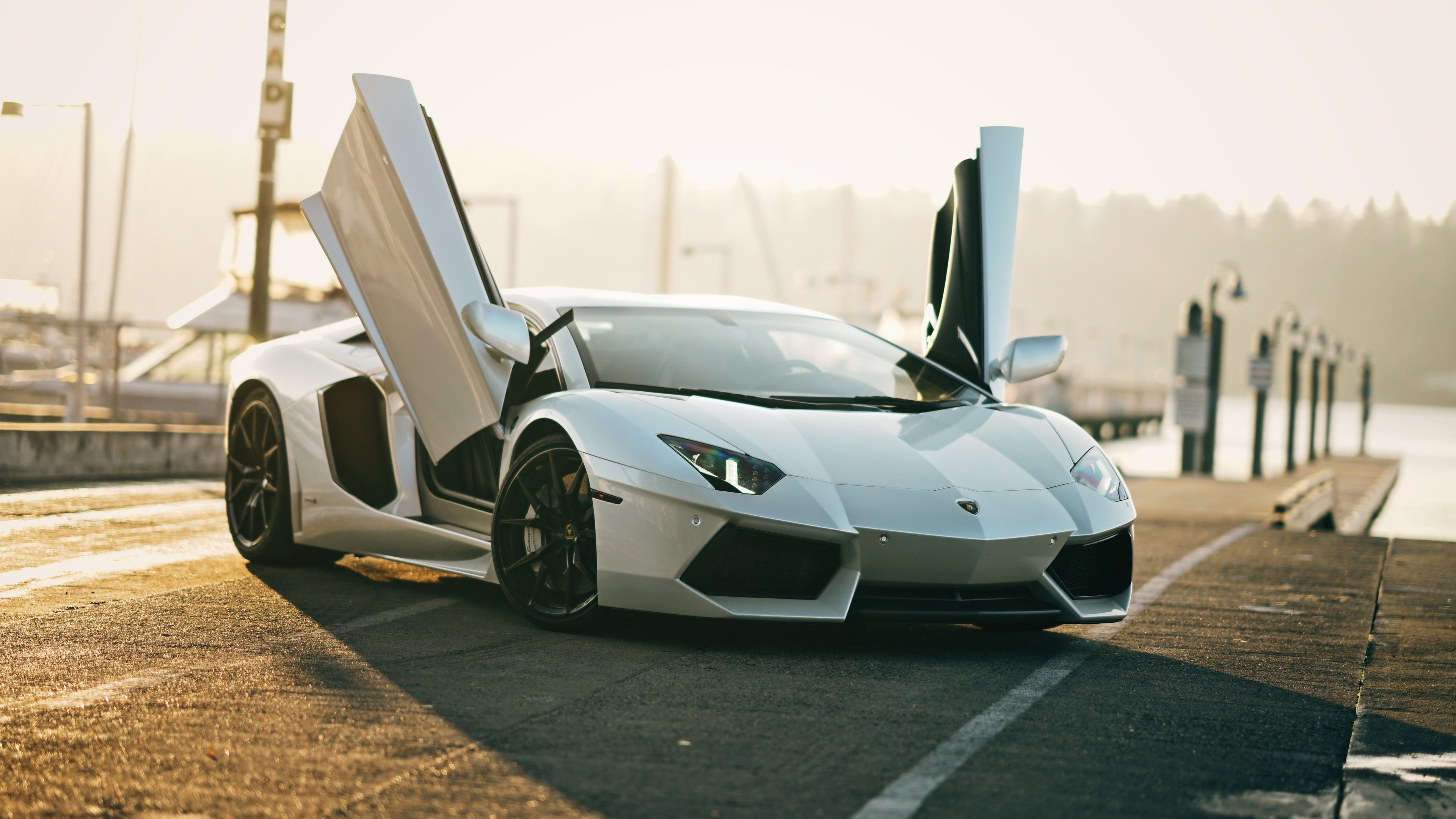 4k white lamborghini aventador 1557260857 - 4k White Lamborghini Aventador - lamborghini wallpapers, lamborghini aventador wallpapers, hd-wallpapers, cars wallpapers, 4k-wallpapers