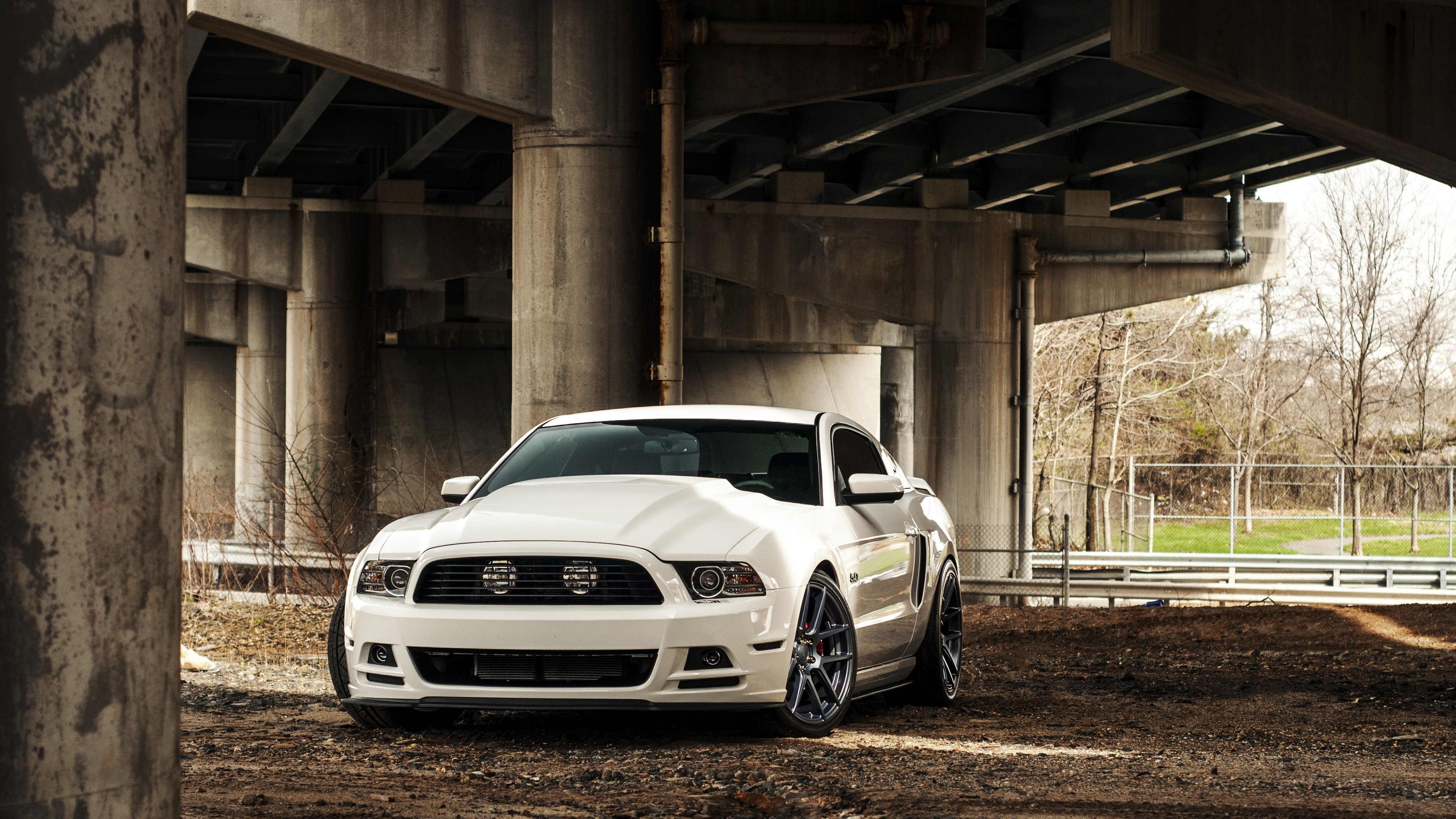 ford carol shelby gt500 4k 1557260863 - Ford Carol Shelby GT500 4k - shelby wallpapers, hd-wallpapers, ford wallpapers, ford mustang wallpapers, cars wallpapers, 4k-wallpapers, 2019 cars wallpapers