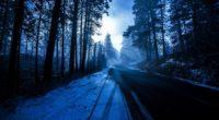 forest snowy dark evening 4k 1558220809 200x110 - Forest Snowy Dark Evening 4k - snow wallpapers, nature wallpapers, hd-wallpapers, forest wallpapers, evening wallpapers, 5k wallpapers, 4k-wallpapers