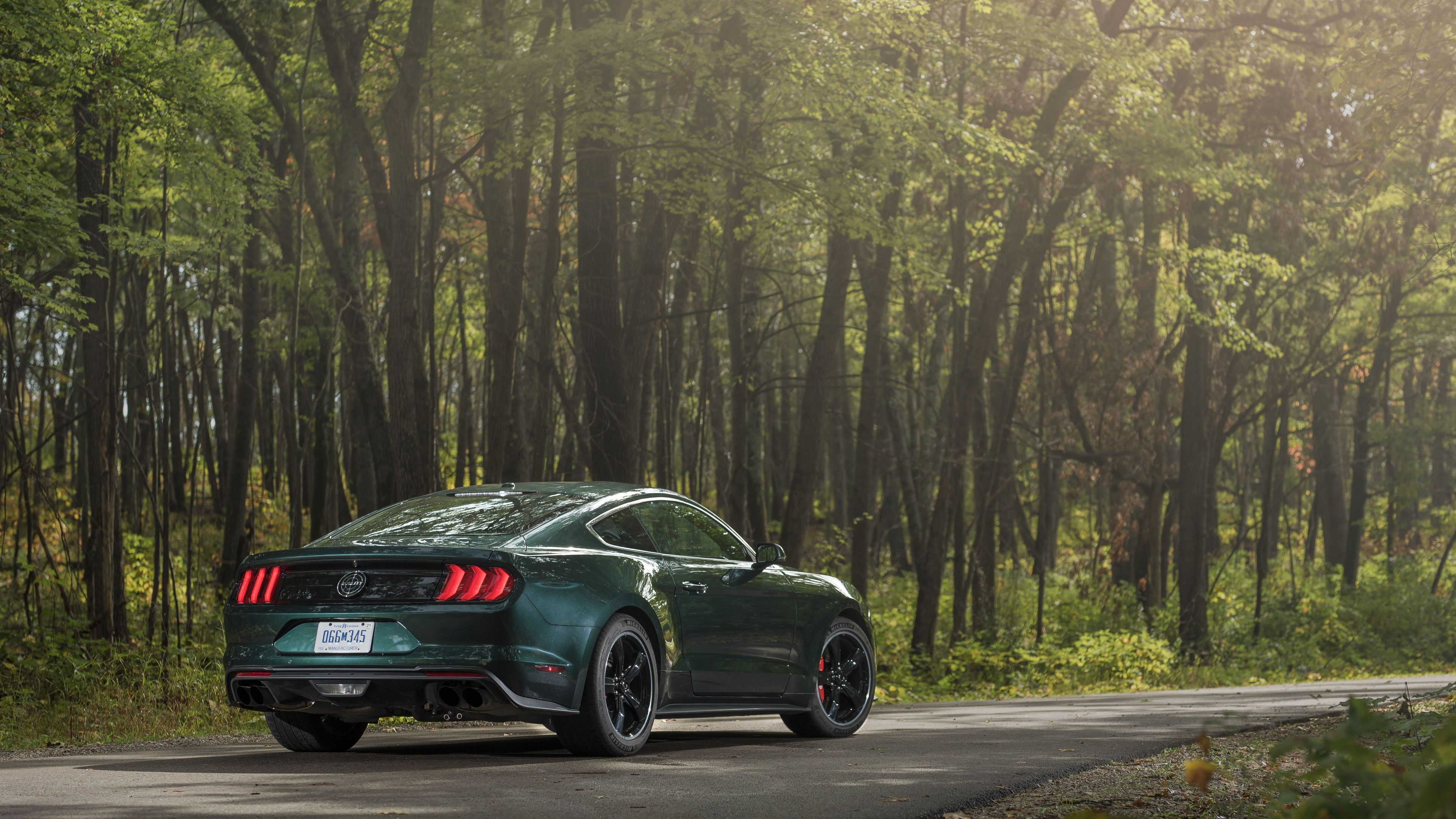 2019 ford mustang bullitt 4k 1559764516 - 2019 Ford Mustang Bullitt 4k - mustang wallpapers, hd-wallpapers, ford wallpapers, ford mustang wallpapers, cars wallpapers, 4k-wallpapers, 2019 cars wallpapers