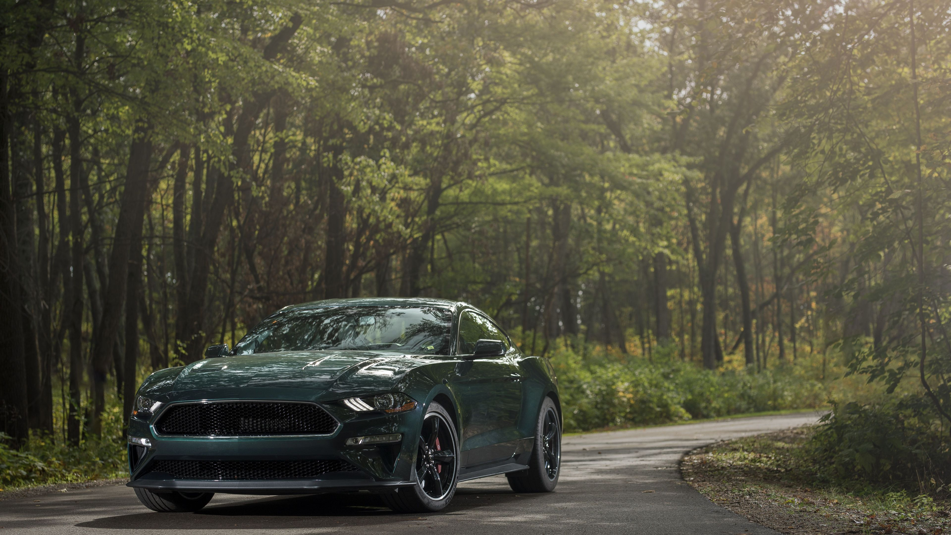 2019 ford mustang bullitt front 1559764514 - 2019 Ford Mustang Bullitt Front - mustang wallpapers, hd-wallpapers, ford wallpapers, ford mustang wallpapers, 4k-wallpapers, 2018 cars wallpapers