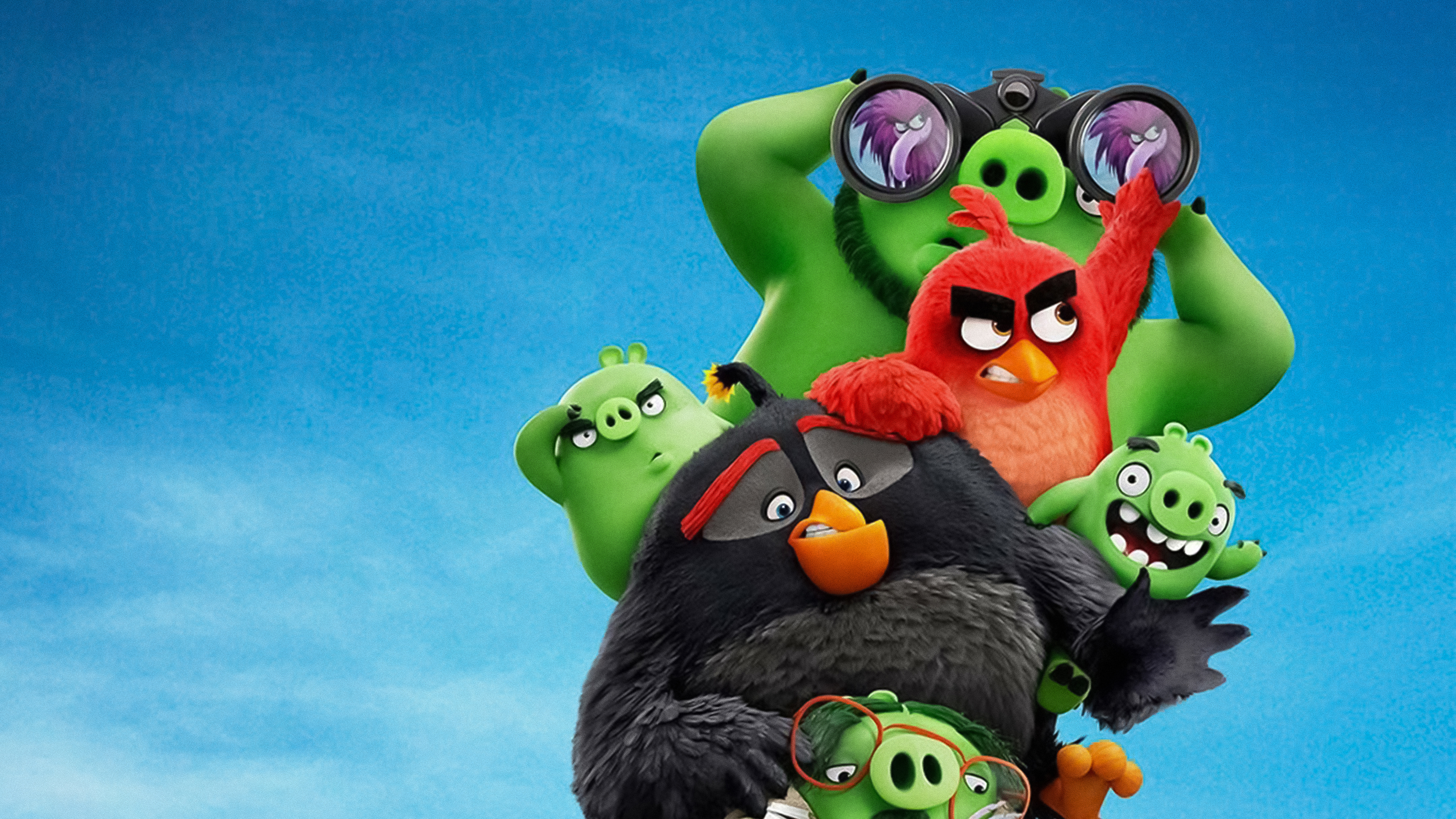 the angry birds movie 2 4k 1560535107 - The Angry Birds Movie 2 4k - the angry birds movie 2 wallpapers, the angry birds 2 wallpapers, movies wallpapers, hd-wallpapers, angry birds wallpapers, 4k-wallpapers, 2019 movies wallpapers